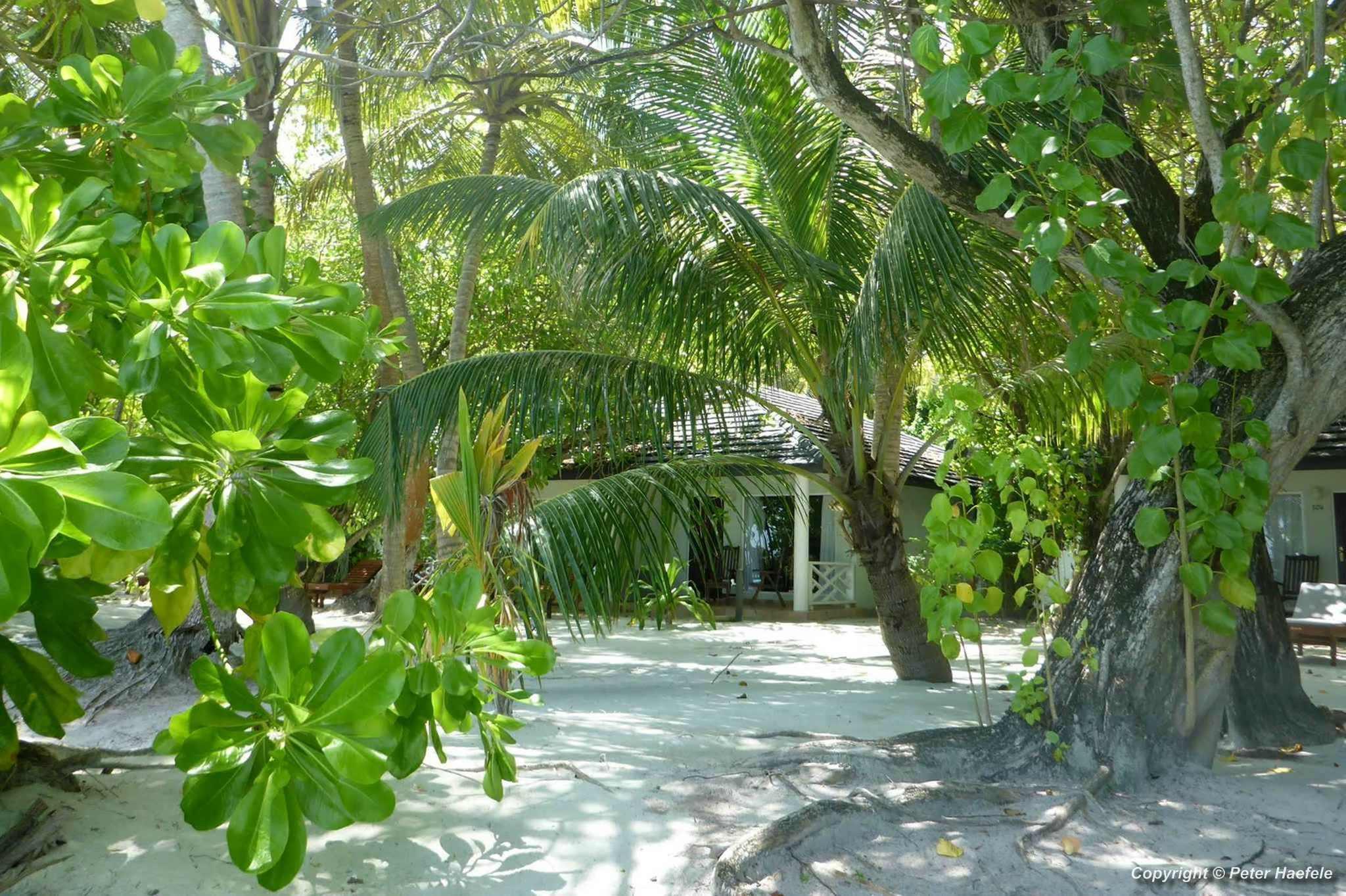 Beach Bungalow Super Deluxe Nalaguraidhoo Sun Island Malediven