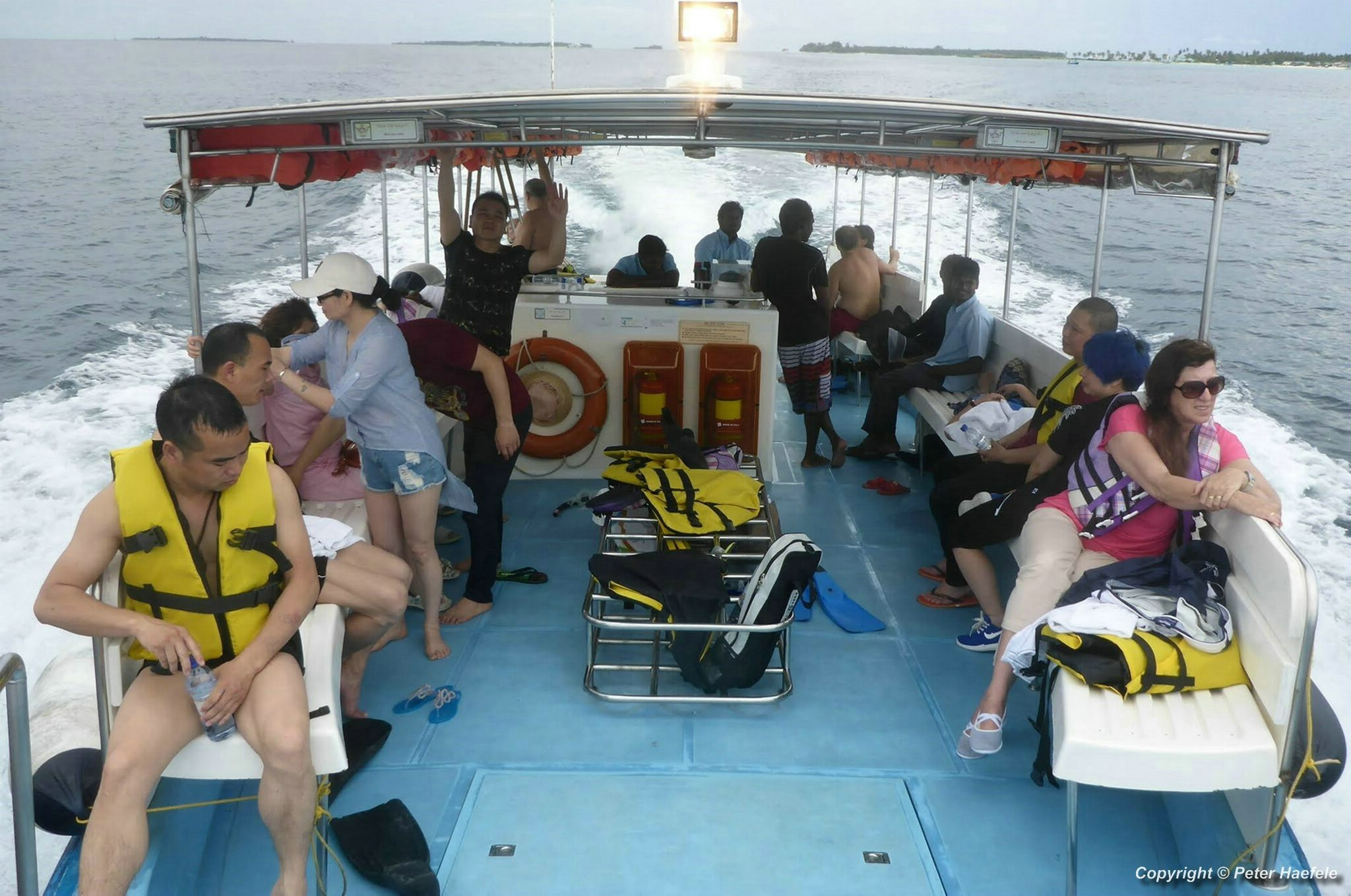 Walhai Exkursion Sued Ari-Atoll, Malediven