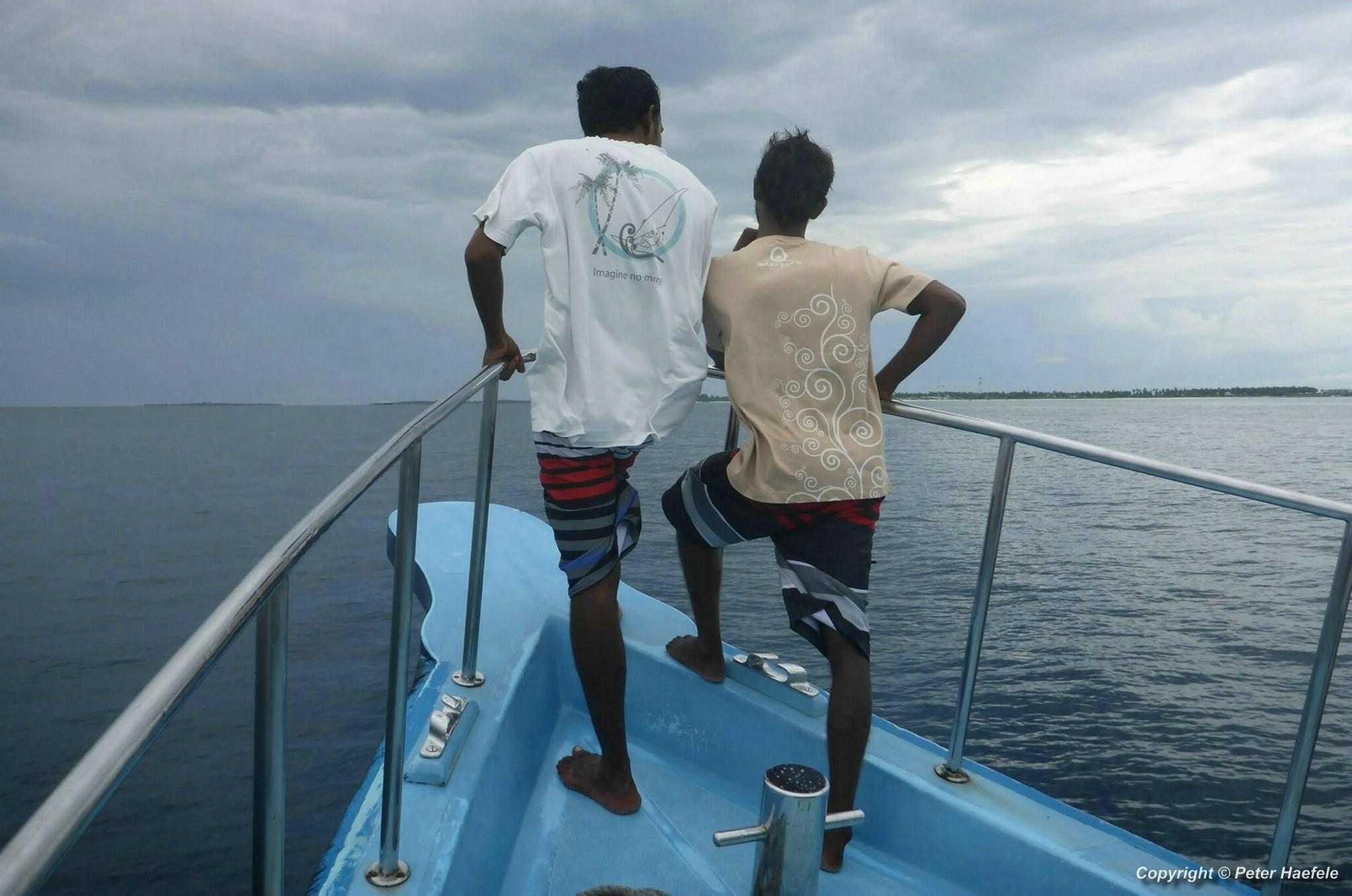 Unsere Guides, die nach einem Walhai Ausschau halten